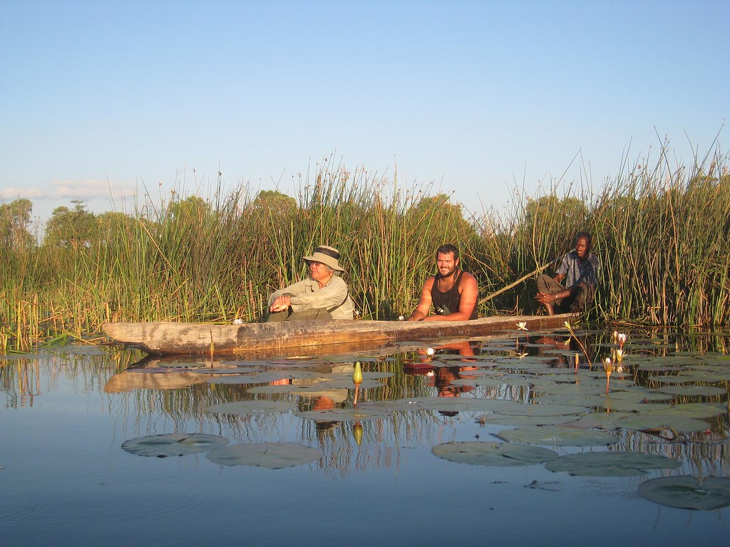 Hoping to spot hippos from our mokoros as the sun sets over the Delta.