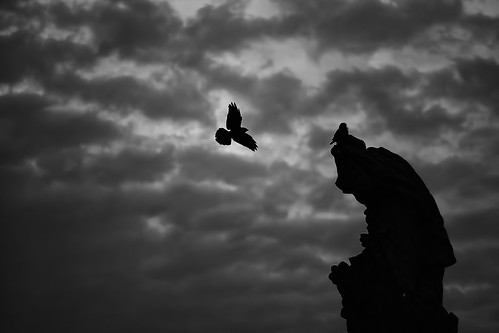 Once Upon A Midnight Dreary (TheFella) bridge shadow sky blackandwhite bw slr bird monochrome birds silhouette statue clouds digital sunrise canon dark eos dawn flying photo scary lowlight europe darkness czech prague flight charles praha unescoworldheritagesite unesco photograph processing czechrepublic dslr lowkey charlesbridge karluvmost postprocessing 500d twtmemm
