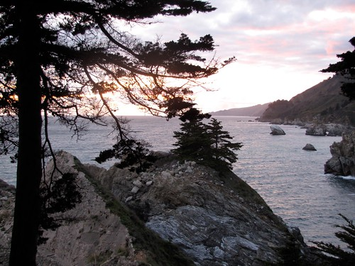 Camping at Julia Pfeiffer Burns State Park