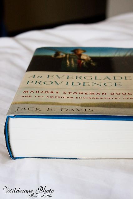 everglades providence