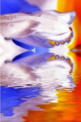 baby drops flood (jodi_tripp) Tags: blue orange white flower reflection water drops flood digitalart refractions joditripp wwwjoditrippcom photographybyjodtripp