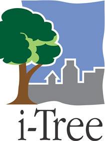 i-Tree Software Logo