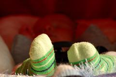 20080419-104412 (j1of2) Tags: boy baby socks felix australia melbourne victoria newborn cousin booties 1weekold 7daysold