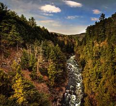 Quechee Gorge Vermont by garreyf