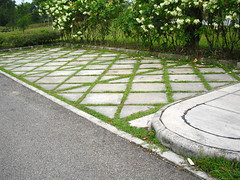 parking-floor (rhmn) Tags: pictures park playground picnic open landscaping space parks tropical recreation plans ideas
