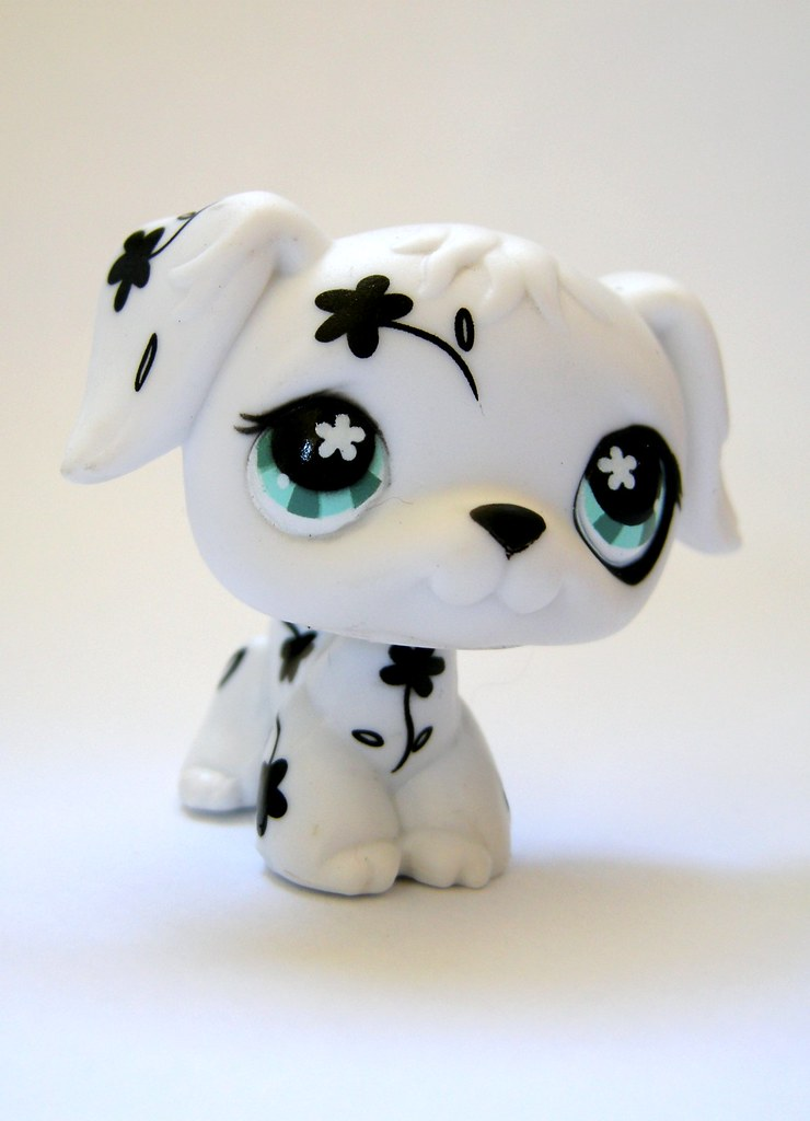 The World's Best Photos of collection and littlestpetshop