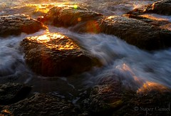 Collaroy Beach, Sydney - waves over rocks (Chamelle Designs) Tags: ocean pink blue trees red sea sky orange sun white color colour reflection beach nature water colors pool beautiful beauty yellow sunrise landscape gold rising dawn golden sand scenery rocks co