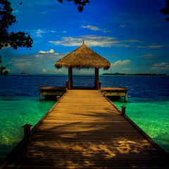 Maldives (dmitrimone) Tags: ocean beach digital canon island eos is paradise raw view perfectday palm 200 mm usm 5000 1785 maldives 3000 soe efs 1000 6000 9000 1000views 8000 4000 7000 blueribbonwinner photomatix 3000views f456 paradiseonearth supershot 100faves 200faves outstandingshots bej 400d 1000view mywinners abigfave platinumphoto theunforgettablepictures theunforgettablepicture colourartaward theperfectphotographer goldstaraward multimegashot dmitrimone
