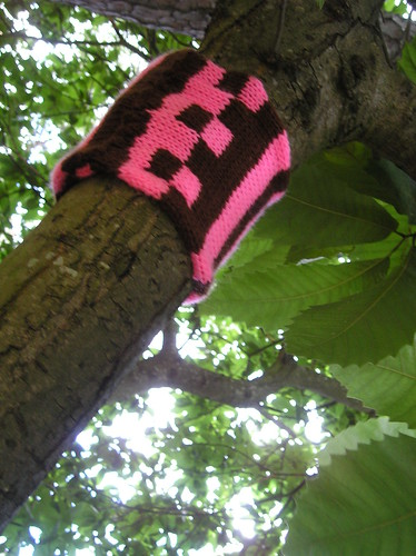 Knitted tree cosy