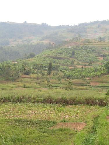Rwanda_DRC_July08 046