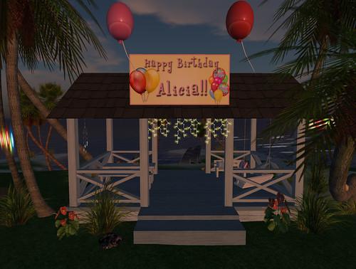 ali-party-02