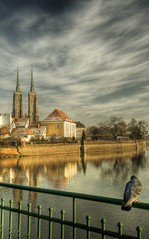 Look at our Cathedral (maciej.ka) Tags: bird animal europe pigeon poland polska pole polen lower hdr polonia wroclaw maciej maciek gob pologne balan wrocaw silesia slask katedra ostrow tumski  polsko dolny  puola poloni ostrw kielan  polnia poljska wrocawska  polandia   wroclove       polandphotography emkej maciekk shotsfromwroclaw shootingwroclaw photowroclaw fotowroclaw photosfromwroclaw wroclawlandscapes wroclawphotography wroclawbeauties
