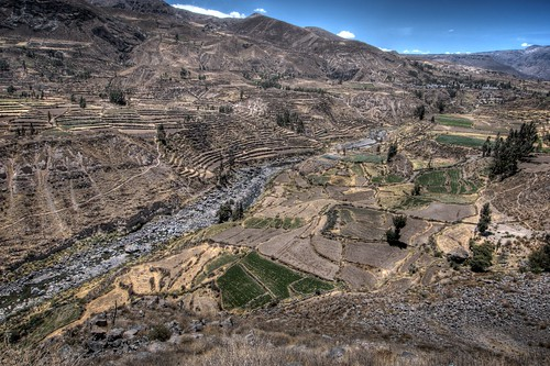 Looking into Colca Canyon