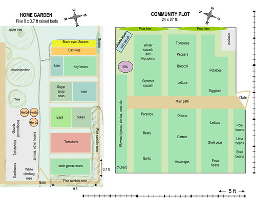 Skippy's Vegetable Garden: plot plan to scale