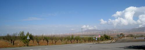 Elevage d'éoliennes dans la Sierra Nevada