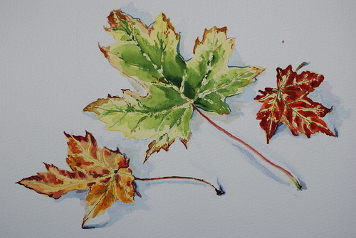 The autumn leaves (watercolour)
