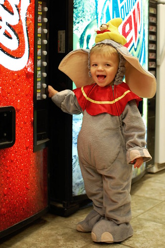Halloween Dumbo