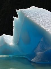 Print it , AK (moelynphotos) Tags: ice alaska glacier icefloes iceberg globalwarming icefloe snowandice aplusphoto citrit montana2alaska natureenthusiast absolutelystunningscapes 100commentgroup moelynphotos savetheice alaskaniceandglaciers worldwidetravelogue rainbowelite