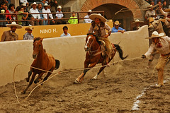 Catch me if you can (Nino H) Tags: horse animal del mexico caballo cheval cowboy action rancho horseman charro caballeros slp sanluispotosi lacharreada mywinners