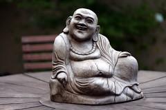 Laughing Buddha – Maitreya