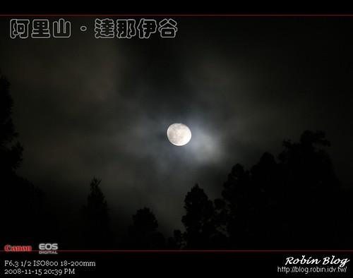 你拍攝的 20081115數位攝影_阿里山之旅424.jpg。
