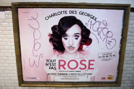 17_octobre_2008_rose_8057