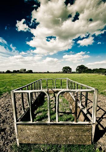 Fields near Up Hatherley Farm Shop