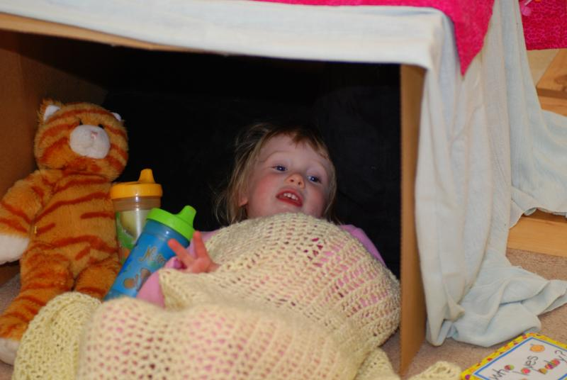 Ellie's Fort