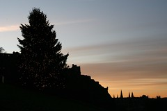 Edinburgh Christmas Tree on The Mound 2008
