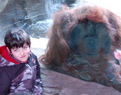 Gage and Orangutan
