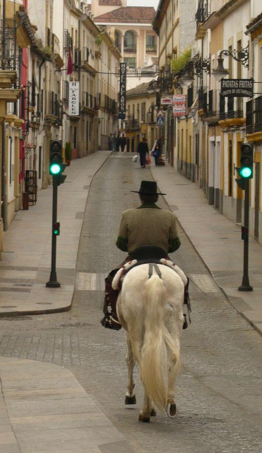 señorito a caballo