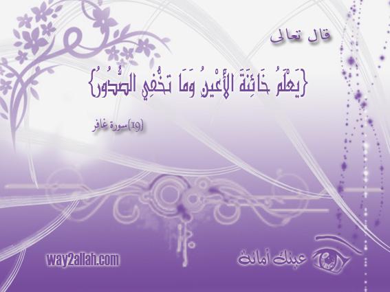 3488907271_6a0aba65eb_o.jpg
