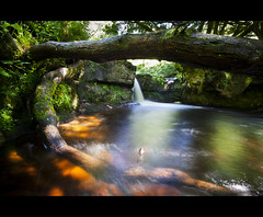"""On Golden Pond"" (Vale Boy) Tags: trees sunlight mountain water wales canon river gold waterfall shadows waterfalls slowshutter talybont blaenyglyn valeboy cliverees"