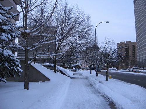 Snowy Chestnut St.