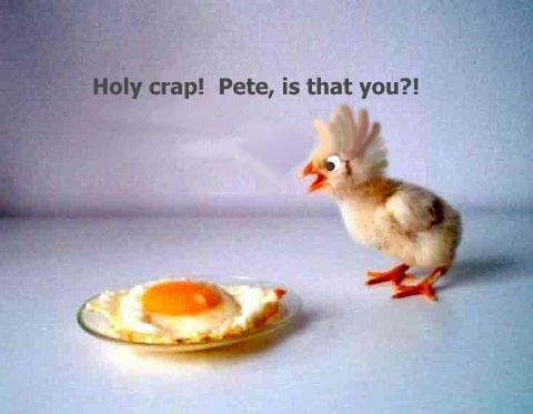 Holy crap! Pete.jpg