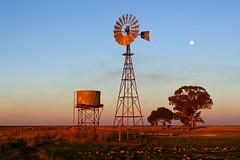IMG_4140_Windmill_Narrandera