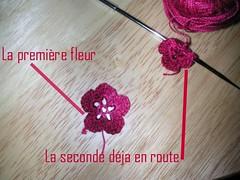 les fleurs en  bus (lalainedelilso) Tags: tricot laine lilso