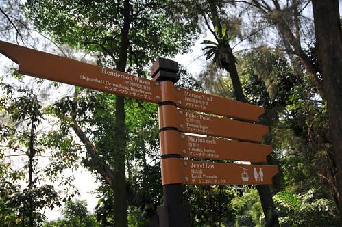 Head towards the Marang Trail