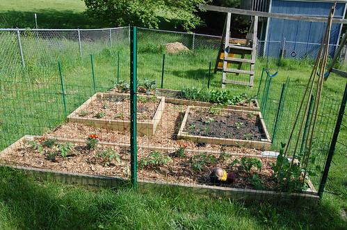 Garden 052808-05