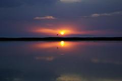 Ηλιοβασίλεμα...... / Sunset (Lefteris Zopidis) Tags: our sunset sea summer sun bird water june clouds heart hellas sunsets greece thessaloniki about 2008 ♥ νύχτα navagio blueribbonwinner lefteris ελλάδα φεγγάρι καλοκαίρι potamos golddragon nauagio epanomi νύκτα θεσσαλονίκη anawesomeshot ysplix sunsetsofourhearts brillianteyejewel zopidis zopidislefteris δειλινό flickerssalonicagroup leyteris ελλάσ ποταμόσ ζωπίδησ ελευθέριοσ λευτέρησ ζωπίδησλευτέρησ sunsets♥ofourhearts πανσέληνοσ ναυάγιο φλίκερσ sunsets♥ofourheart greekflicker φλίκερ νυκτερινήεξόρμηση sunsetsofourheart nabagio επανωμή φλίκερσσαλόνικαsalonica imagescollectors λεφτέρησ