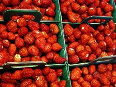 Wild strawberries (Antoaneta) Tags: wild strawberries rungis fraisesdesbois