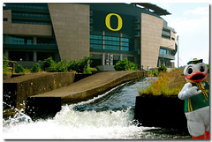 Eugene Oregon>>Autzen Duck (Don Hankins) Tags: oregon ducks mascot waterslide eugeneoregon watershoot autzenstadium