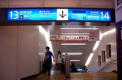 Shinagawa track #13 and 14 ( Narita Express )