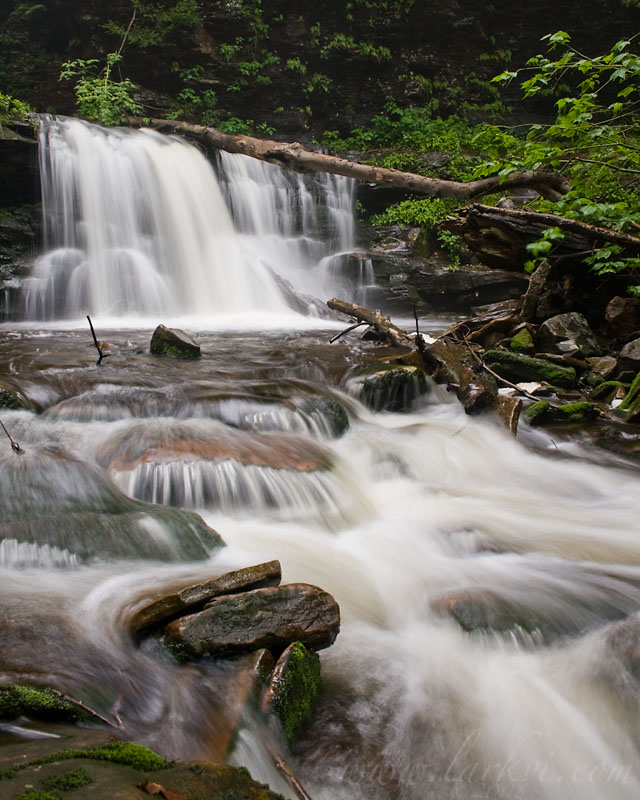 Waterfall (Color), Rickett's Glen State Park, Pennsylvania, June 2008