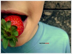 strawberry ♫ (Matteus Oberst) Tags: