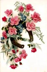 rose's card,carto com rosas (* angelandim *) Tags: roses poster cards prints rosas cartes postais oldcards
