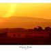 Sunset by imapix
