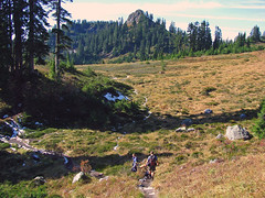 Hikers in Upper Schriebers Meadow