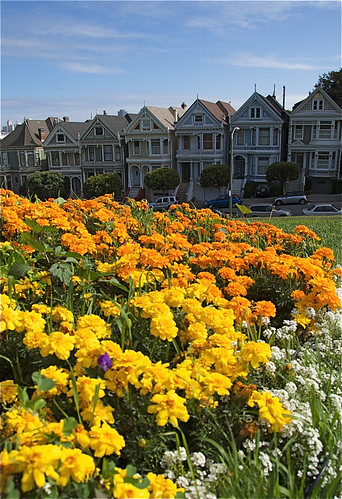 houses_flowers_0017