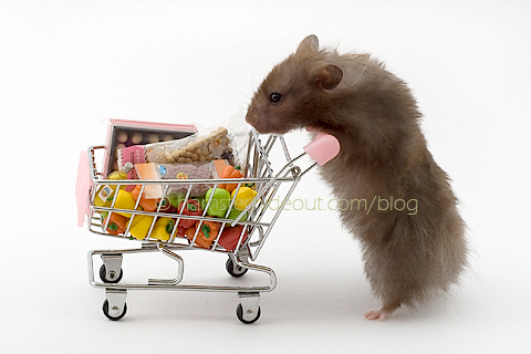 My hamster goes to the supermarket